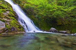 Whiskeytown Falls