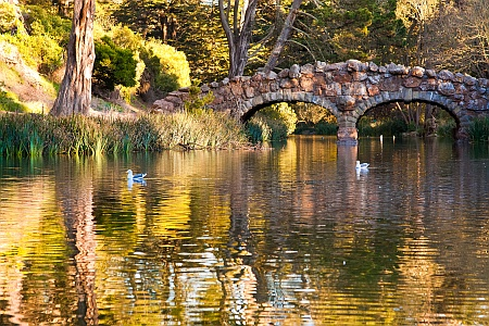 Stow Lake Footbridge