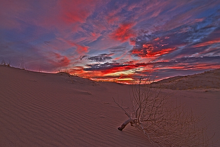 Kelso Dunes sunset