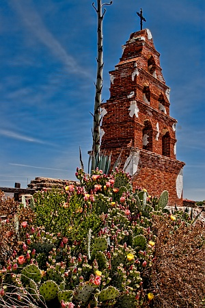 Mission Bells and Cacti