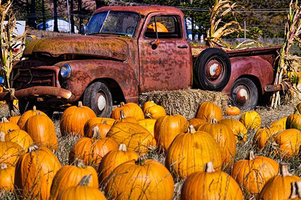 HMB Pumpkin truck